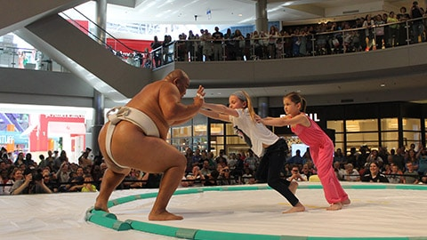 Mall of America Sumo Demo
