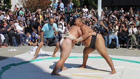Japantown Sumo Demo